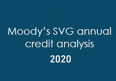 Annual Credit Analysis